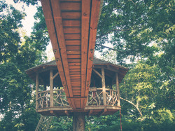 Treehouse builds