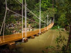 bridgestodiscovery1
