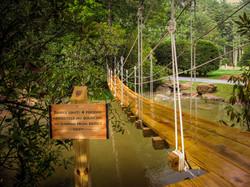 Bridge to Discovery