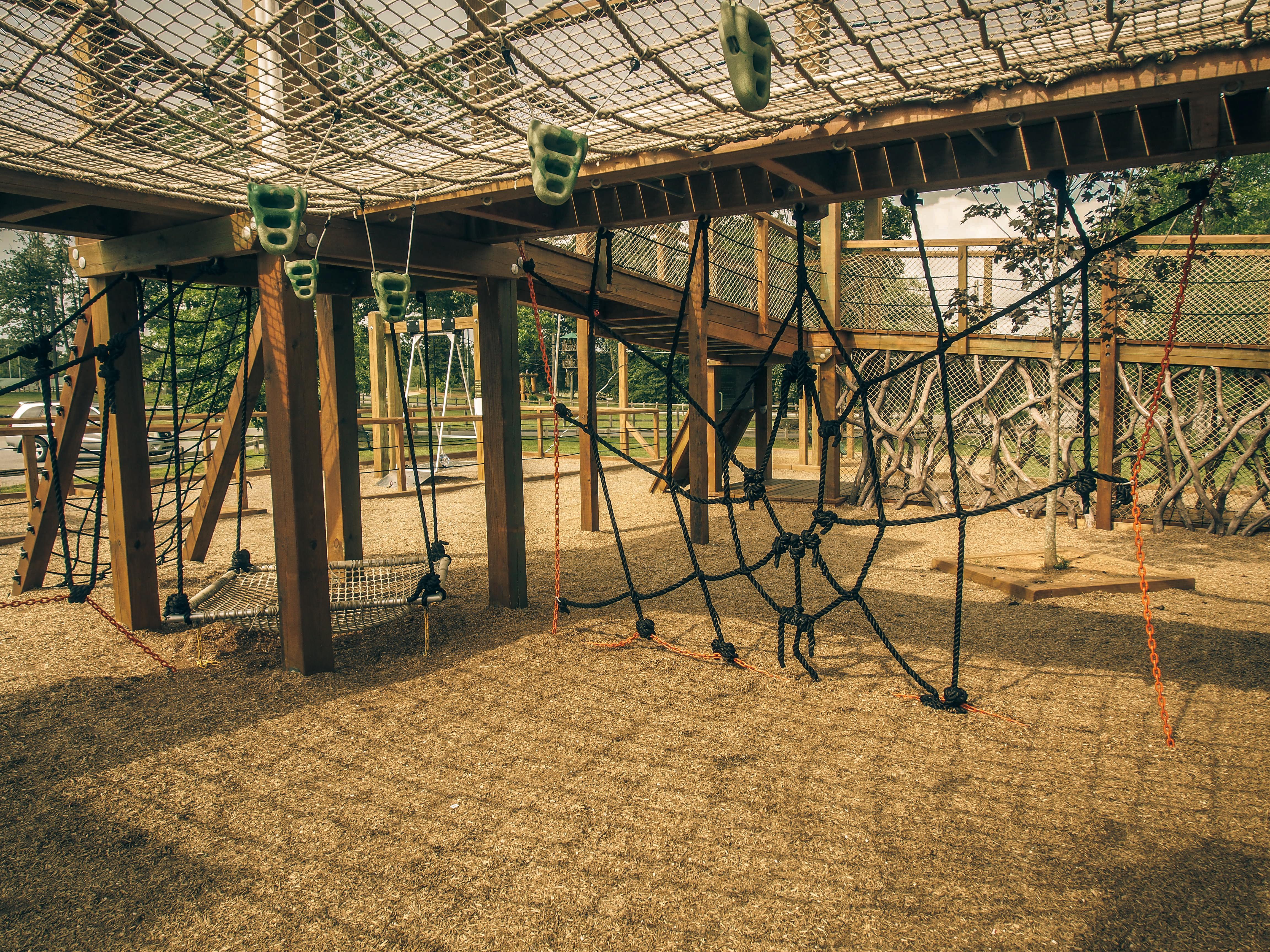 Spider playground