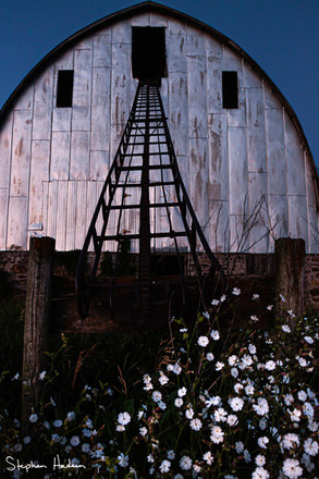 farm summer memories 3