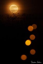 super moon/flower moon 1