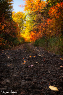 road to fall