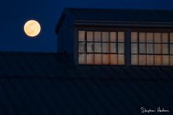 super moon/pink moon 4