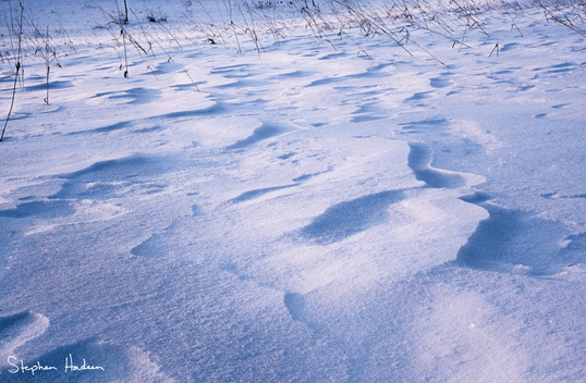 abstract snowscape on the farm