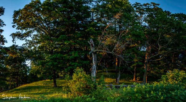 lazy summer sunset panorama