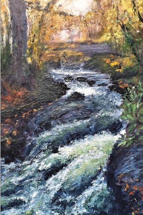 River Braint near Pwllfanogl