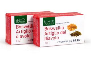 Artiglio del diavolo Vitamine B2+B6+B9