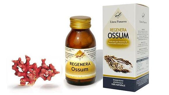 Regenera Ossum 80cps