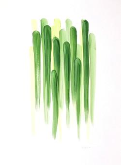 Large Green 006