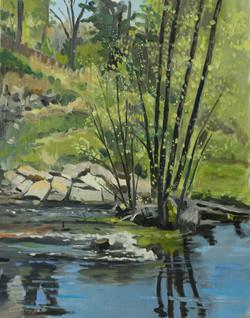 Spring Flow Charles River