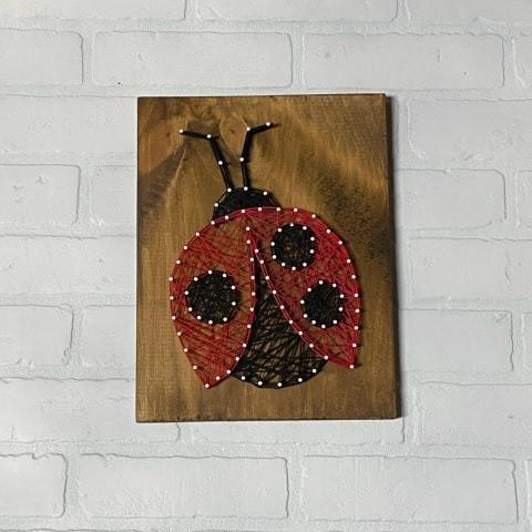 ladybug_edited.jpg