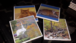Vermont and Pet Coasters