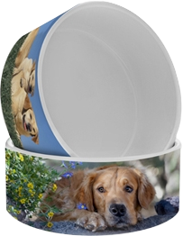 Ceramic Large Pet Bowl - Dog Bowl.png