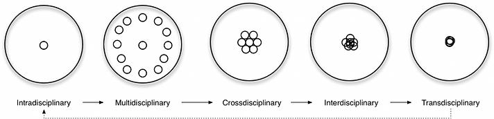 interdisciplinary-1024x247.png