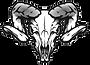 race skull.png