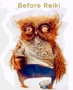 Non-Reiki-Owl.png