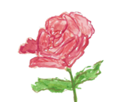 rose-transparent.png
