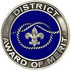 District Award of Merit Pin.jpg