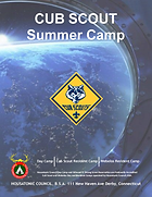 Day Camp and Resident 2020 Cover.png