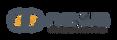 Logo Nexus - Cinza.png