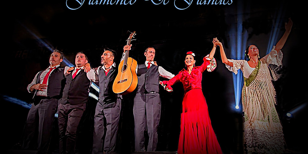 Flamenco de Flandes