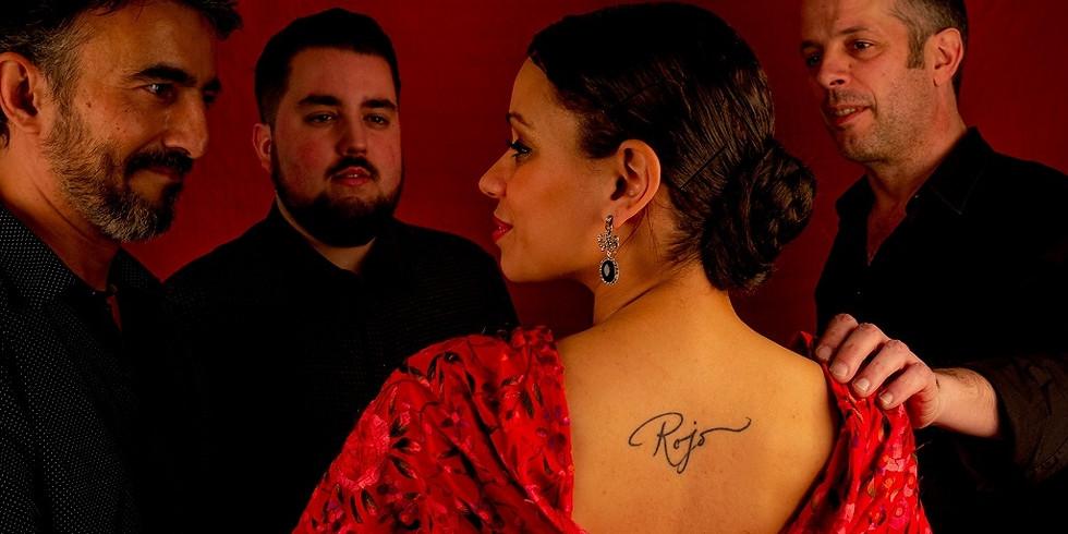 LUNA Producciones presenta ¡Flamenco!