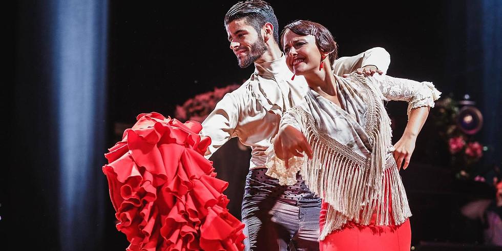 Cenicienta Flamenca