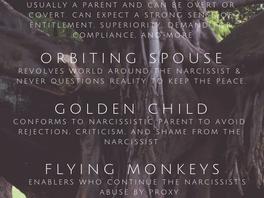 Narcissistic Families: Family Roles & Characteristics