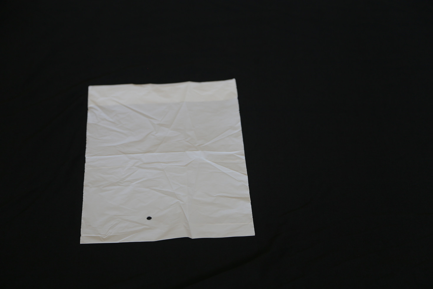 Compostable Envelop Bag