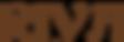 logoriva_web (2).png