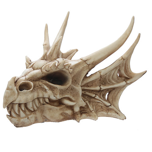 Collectable Dragon Skull Right View Angled