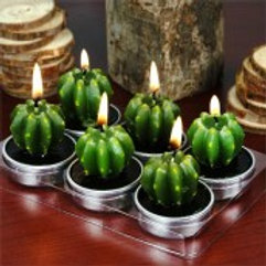 Monks Cactus Tealights in Gift Box