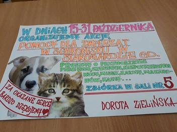 Akcja wsparcia dla zwierzaków w schronisku