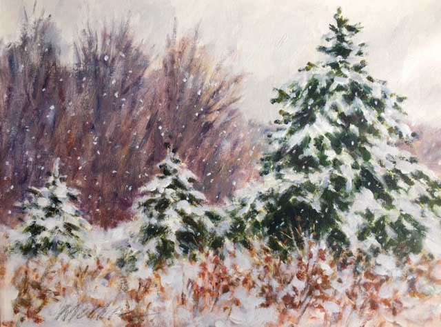 Pines in Winter