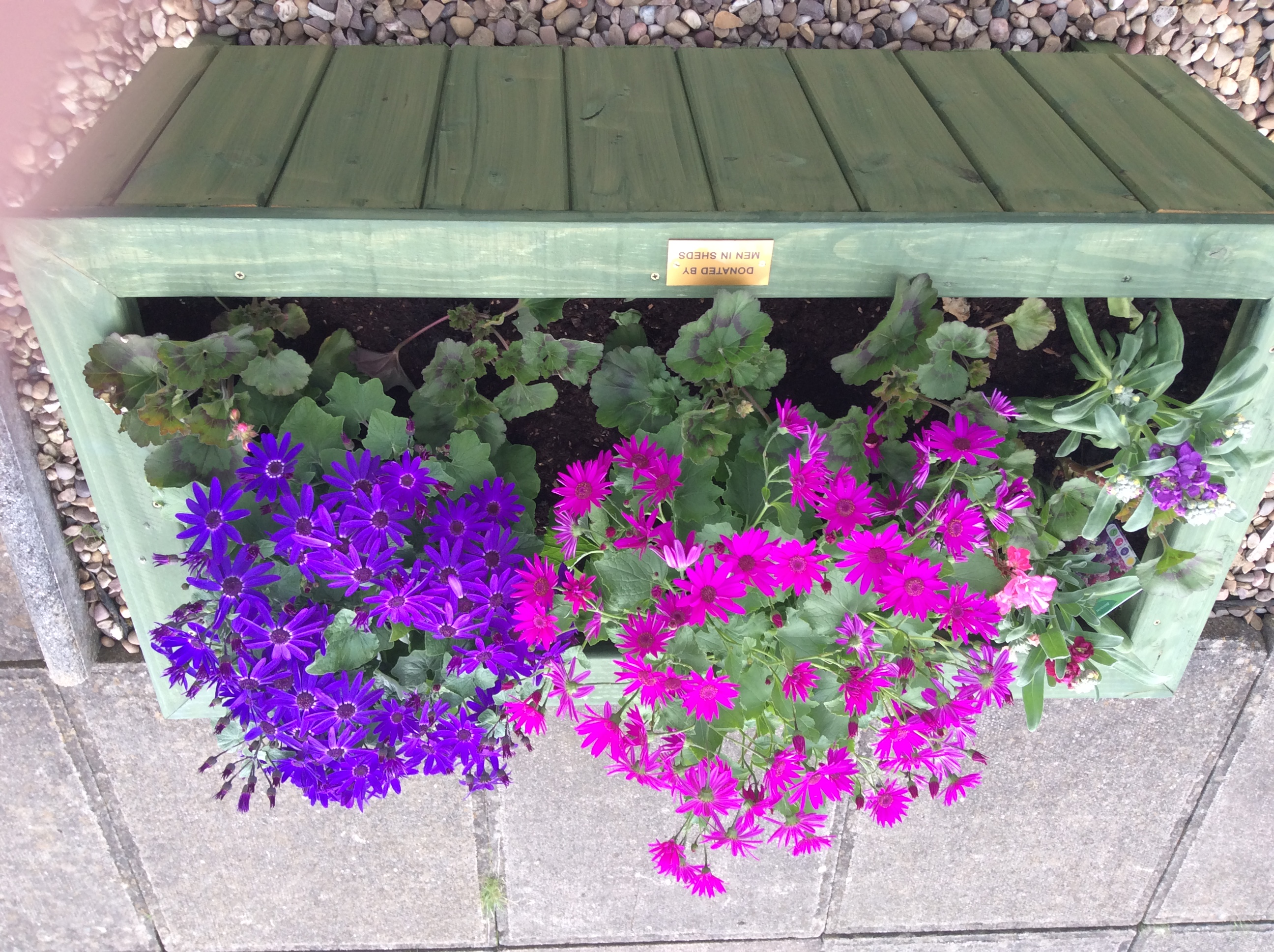 Planters donated by Men in Sheds