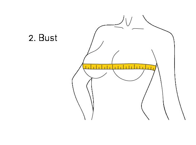 Bust Measurement