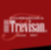 Logo_Trevisan.png