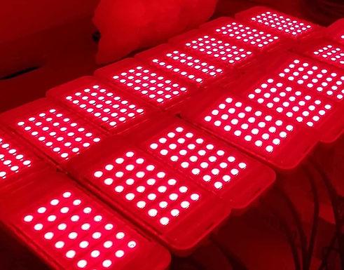$49 Laser Lipo Treatment