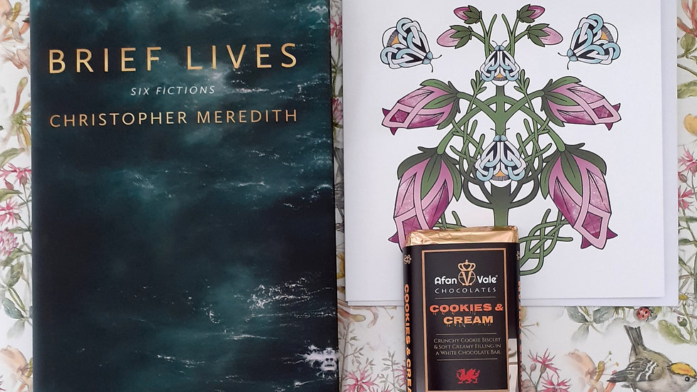 Brief Lives Six Fictions:  Christopher Meredith