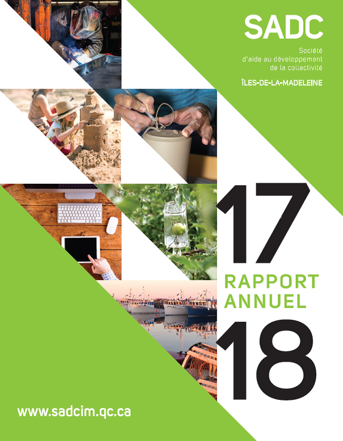 Rapport annuel SADC 2017-2018
