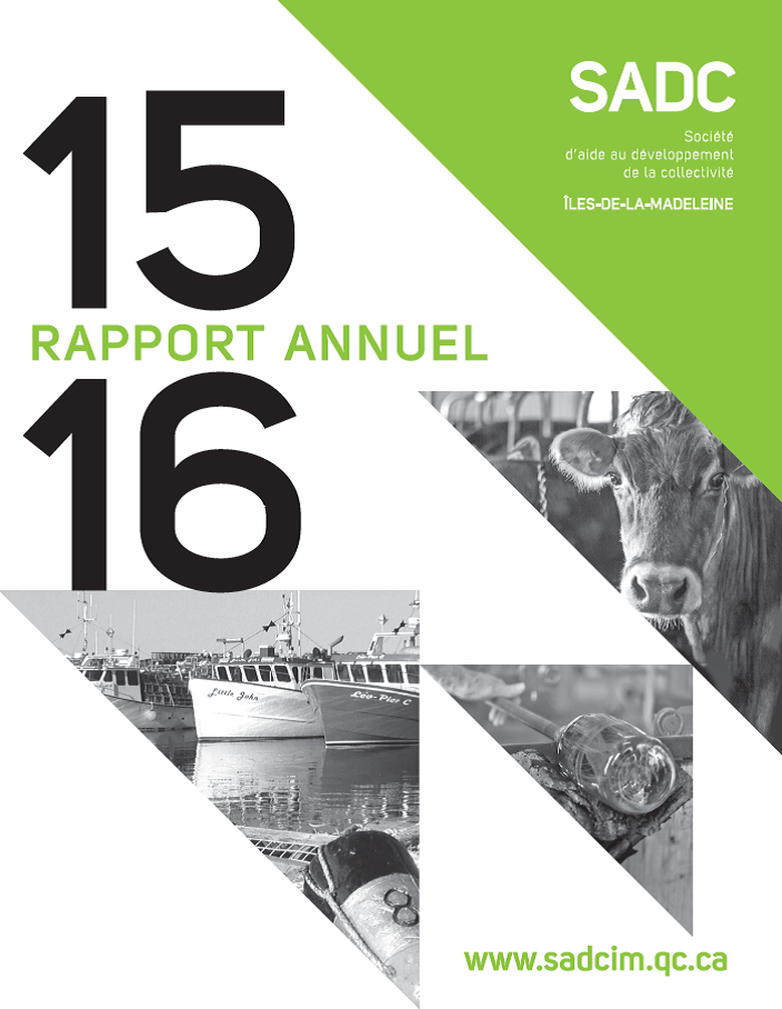 Rapport annuel SADC 2015-2016