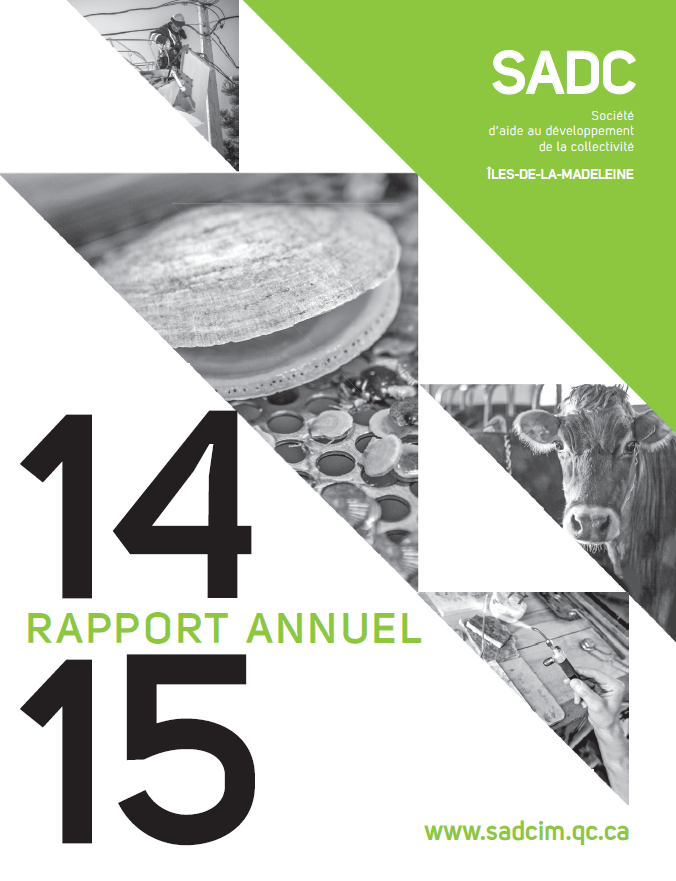 Rapport annuel SADC 2014-2015