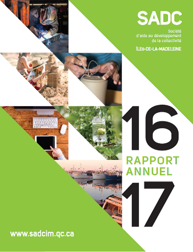 Rapport annuel SADC 2016-2017