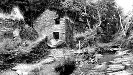 mill black and white.jpg