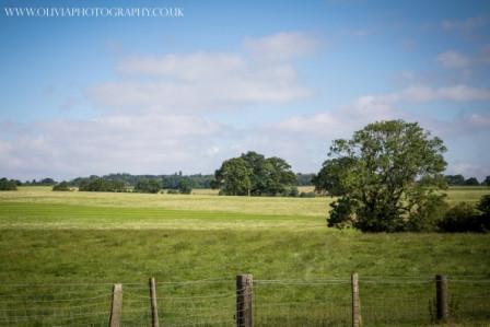 countryside views 2.jpg