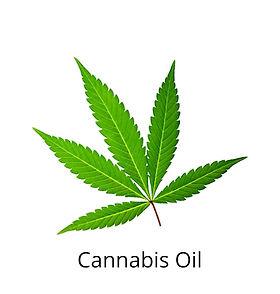 CANNABIS OIL.jpeg