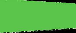 dark green strip.png
