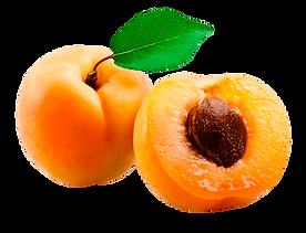 Abricot 5.png
