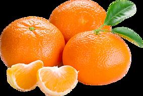 orange_PNG809.png